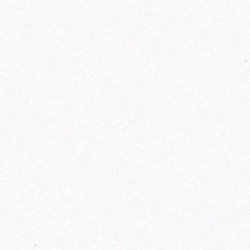 Столешница Платиновый белый L016 3050*600*28
